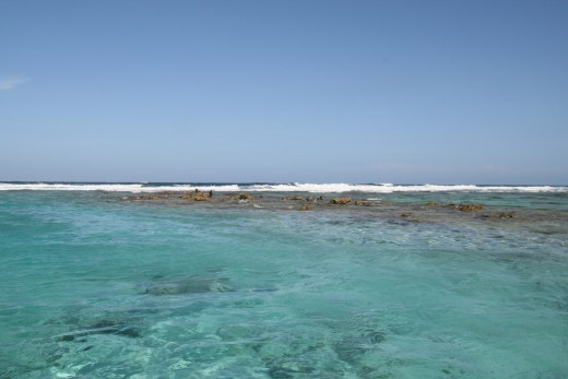Belize Barrier Reef  off the coast of Ambergris Caye.