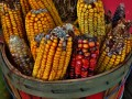 The High Fructose Corn Syrup Controversy