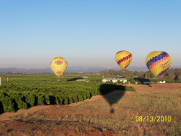 Wine tasting isn't the only thing to do in wine country. Visit Temecula and get a view from the sky!