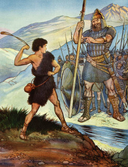 David defended his flocks, and also his country