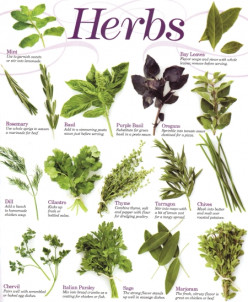 Unmasking the Mystery of Cooking with Herbs