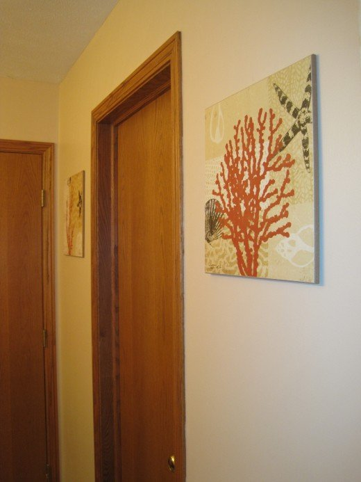 Shell prints by Tandi Venter hang on freshly painted wall.