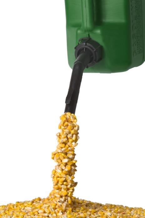 Corn Ethanol Waste