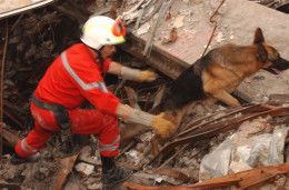 Finding someone in a collapsed building is easy compared to finding information on the net without a search engine.