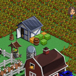 "I used to play games on Facebook. In fact, this is my farm. However, I soon became bored with the games. Are you a ""Gamer"" friend?"
