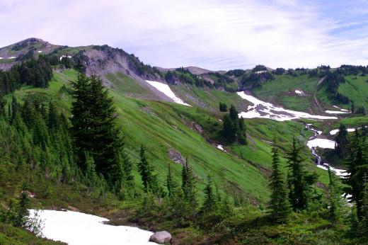 Lush green hillsides off the trail.