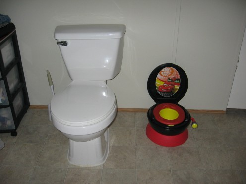 Toddler Potty next to Toilet