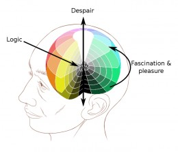 Mind excercises help to keep your brain healthy.