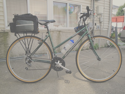 Bike with rear mount rack