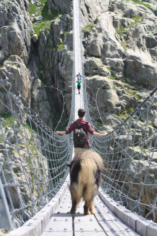 The Trift hanging bridge, Switzerland Benda walking through and back the bridge.