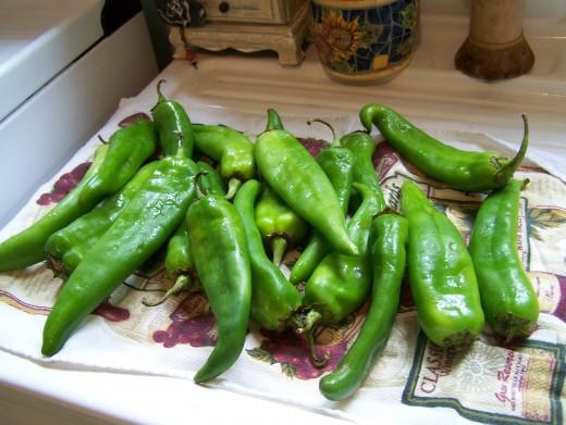 Green Chiles! Photo©2012 Teri Helton