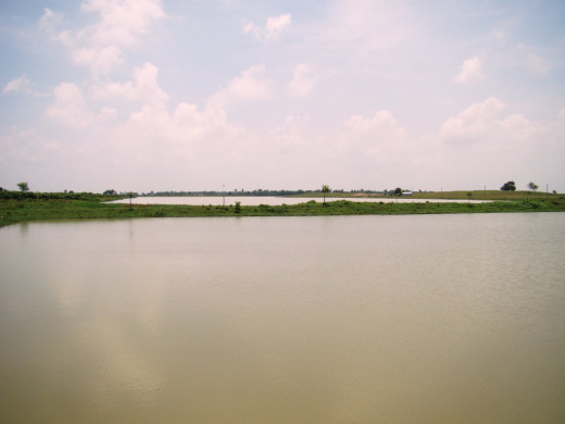 Dhamas Dighi, a very large water body