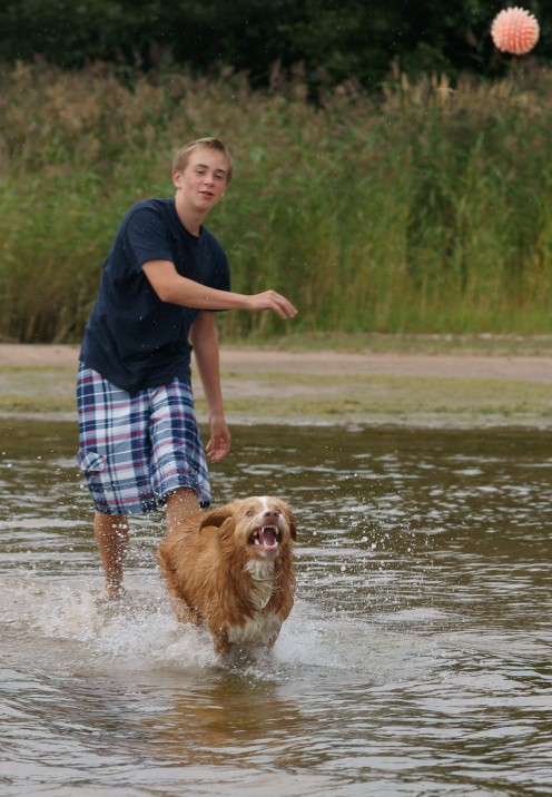 Soon you will be able to play fetch anywhere. Some water loving dogs will even swim out into a lake to retrieve their ball.