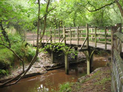 'Poohsticks Bridge' at Ashdown Forest in Essex, UK.