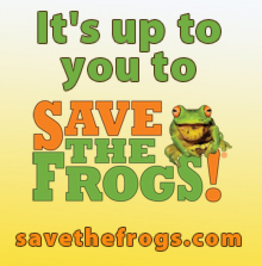 Save The Frogs banner