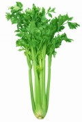 Nutritional Benefits of Celery, Celery Seeds, Celery  Juice and Celery Oil