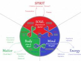 Ginko biloba helps to achieve a healthy mind and body.