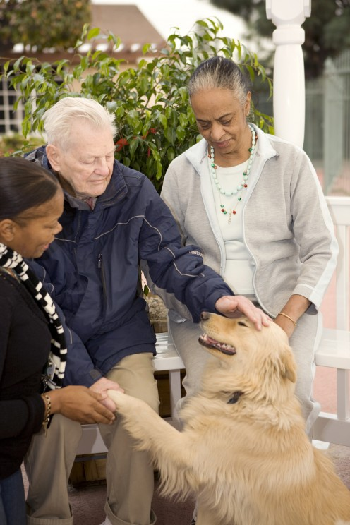 An elderly man pets a dog while two caregivers look on at a Silverado care facility.