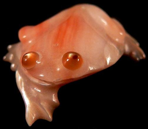 Ricky Laahty Abalone Frog