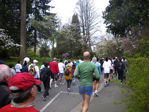 Walking through Stanley Park