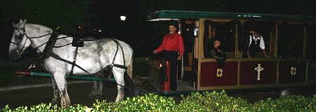 Exploring Haunted Saint Augustine by Horse Drawn Carriage
