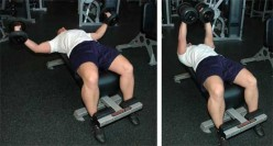 Strength Training: Best Weight Bench Exercises