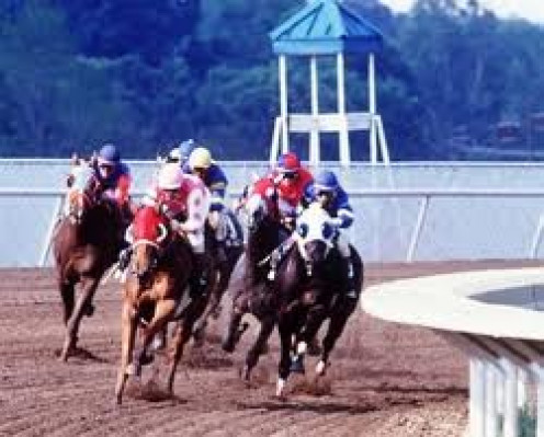 Racing at the Track is intense to say the least. The race can be seen outside from the bleachers or from the restaurant tables on the inside looking at the race out the window.