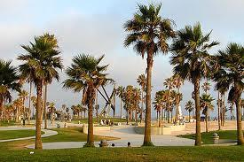 Venice Beach - Popular Beaches in California