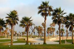 Venice Beach - Popular Beaches in California