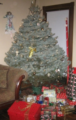 Holiday Traditions: Oh Christmas Tree