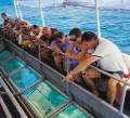 Glass Bottom Boat Trip