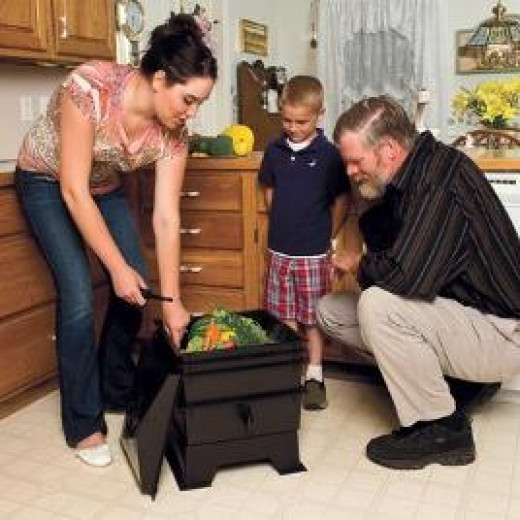 Indoor Composting with the family