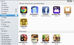 The App Library in iTunes.