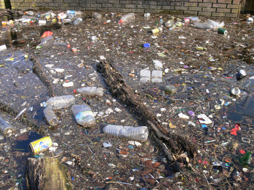 Industrial units and liquid and solid wastes from homes pollute water