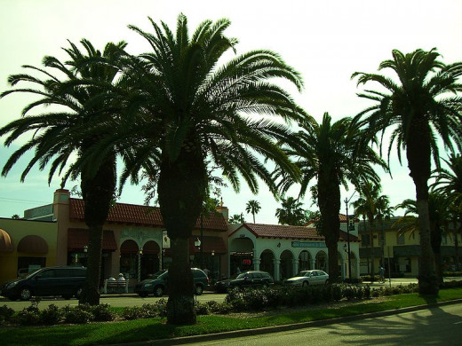 Downtown Venice has manicured palm-tree lined walkable streets.