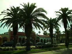 More Things to Do in Venice, Florida