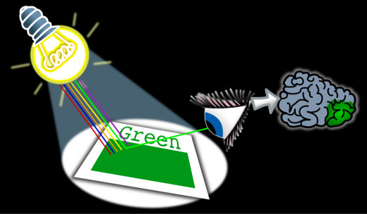 All colors of light hit the green object.  The object absorbs all of the colors of light except green.  The green light is reflected back to the eyes.  This makes the object appear to be green.