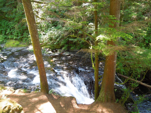 Brook That Leads to Multnomah Falls