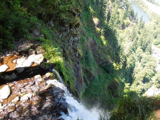 View from the Top of Multnomah Falls
