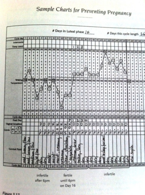 """An example chart from """"The Garden of Fertility"""""""
