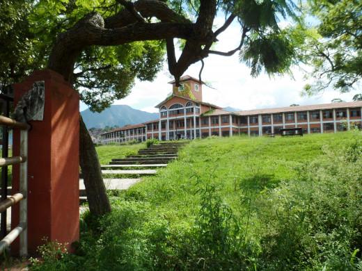 Lovely view of TRIBHUVAN UNIVERSITY Nepal.