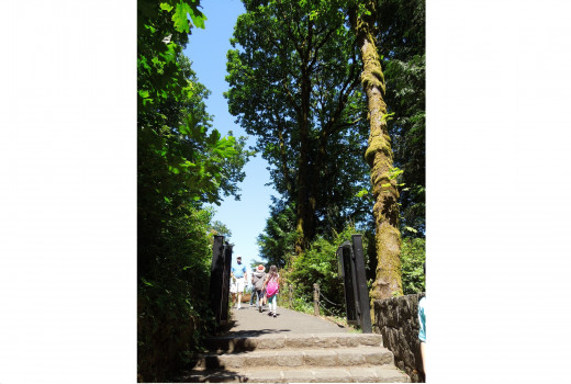 Steps Leads to Multnomah Falls Walking Trail