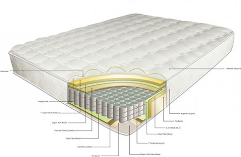Reasonable Mattress And Bed Spring