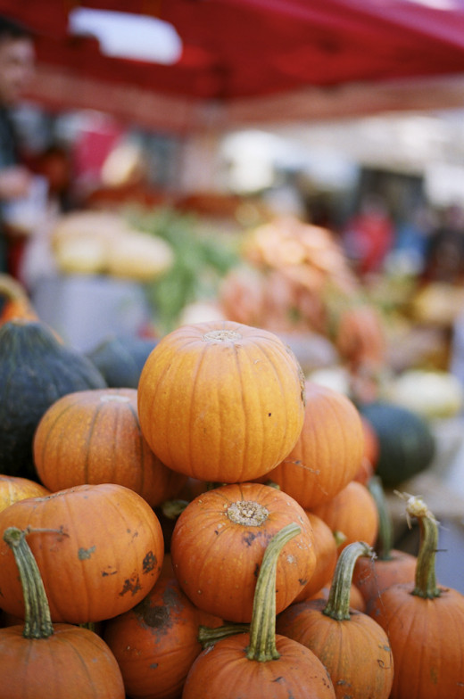 Pumpkins for sale at the Ballard Farmers Market.