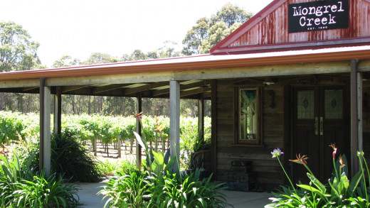 Mongrel Creek Winery, highly recommended, but closed when I visited!