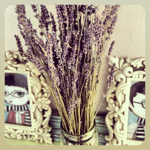 dried lavender in mason jar