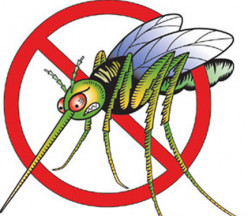 2012 Guide to Safest Bug/Mosquito Repellents