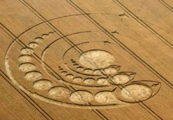 What You Didn't Know About Crop Circles - This Is Not A Hoax - Crop Circle Research