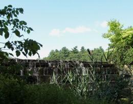 A dam keeps the wetland wet