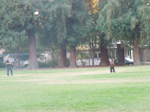 People Playing Ball at Municipal Rose Garden in San Jose CA